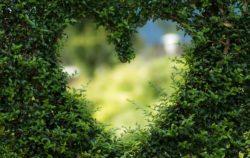 Cambiar al amor